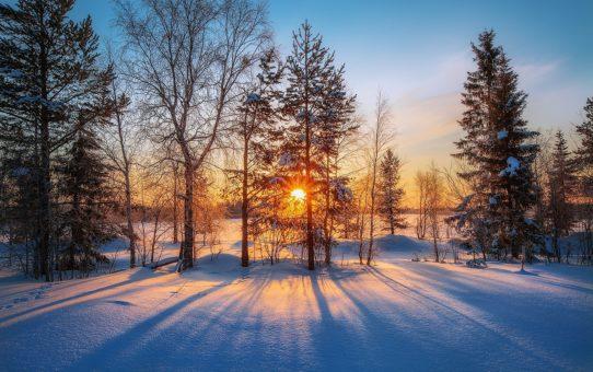 Как пережить зиму